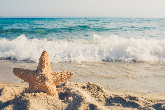 Starfishes on the Beach - Short Inspirational Stories