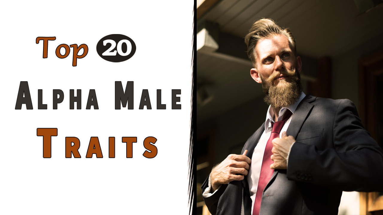 Top 20 Alpha Male Traits that can Change Your Life